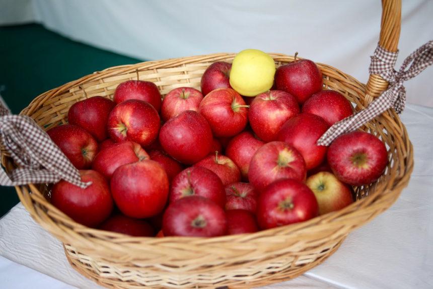 Appels in Zuid-Tirol