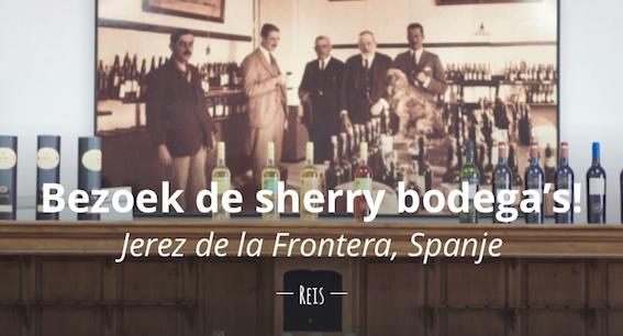 Bezoek sherry bodega's reisjournalist culinair journalist travelblogger reislogger reisblog foodblog jerez de la frontera